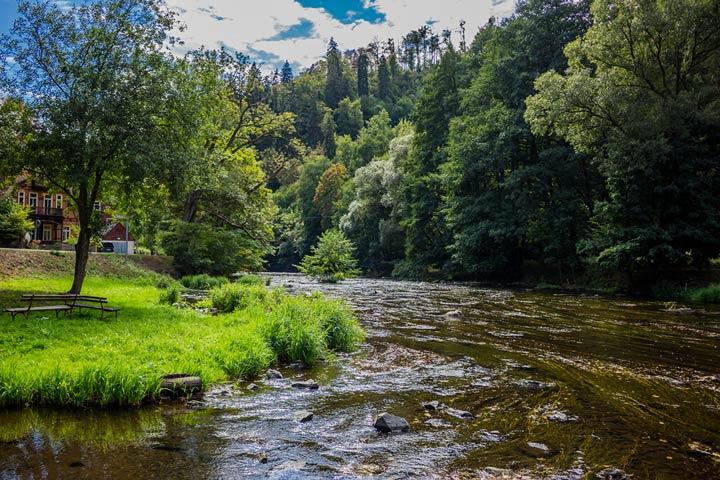 Harz - Urlaub inmitten malerischer Natur