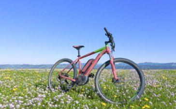 Fahrrad für den Frühling fit machen