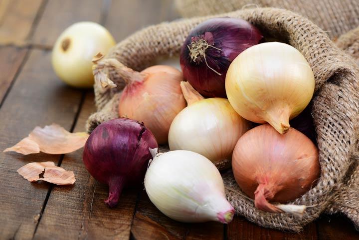 Die Zwiebel wirkt antibakteriell und entzündungshemmend