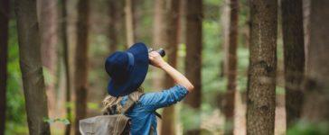Fernglas für die Vogelbeobachtung finden