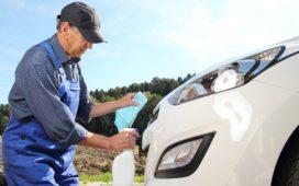 Insektenreste am Auto entfernen